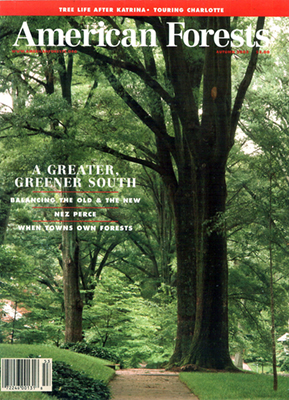 North Carolina, Jim's photo of a tree-lined street in Charlotte on the cover of American Forest magazine, Aug 2005 [Ask for #990.063.]