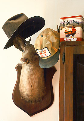 NC: Buncombe Co., Asheville area; farm house interior detail, of hats hanging on the antlers of a mounted deer head hunting trophy
